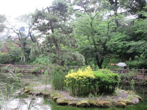 おすすめスポット!鍋島松濤公園