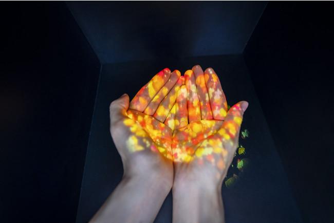 除菌アート『NAKEDつくばい™️』 本来より手を清める役割をもつ「つくばい」を元にした、感染症対策のNAKEDオリジナルデジタルアート。手をかざすとアルコール消毒液とともに、12星座のいずれかが手のひらに広がる。